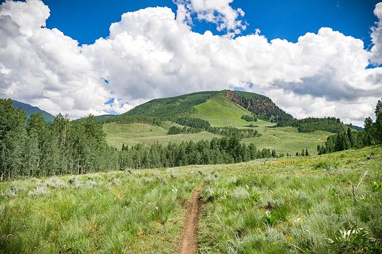 Singletrack in Gunnison Valley, Colorado
