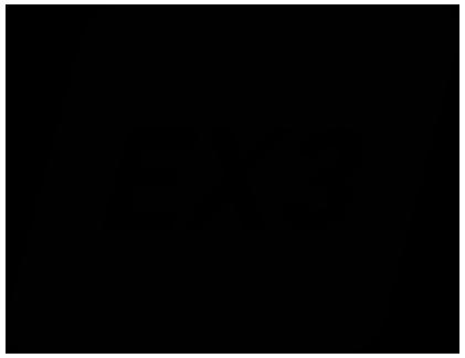 EX3 Icon