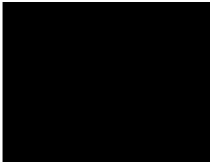 S1 Icon
